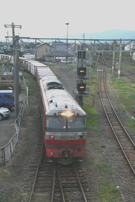 DF901DSC_1204-2.jpg