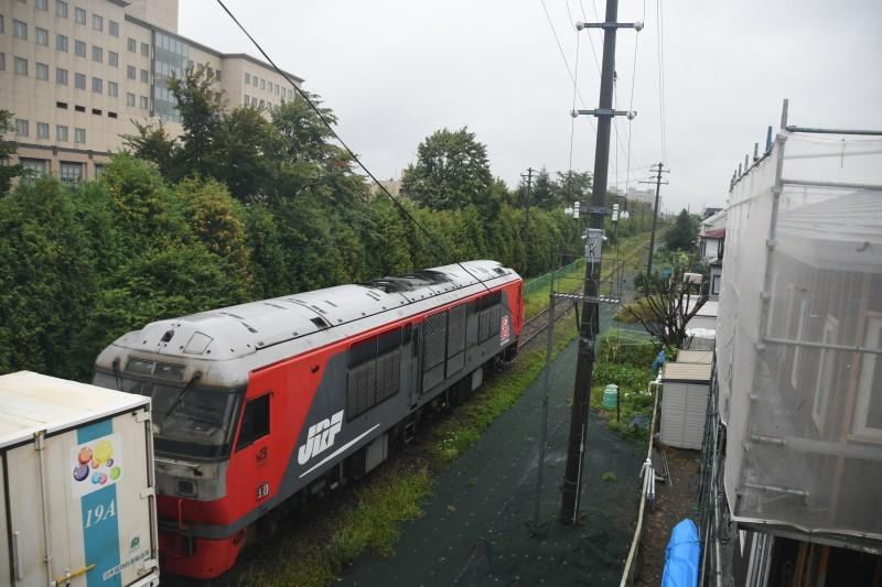 DF901DSC_1232-1.jpg
