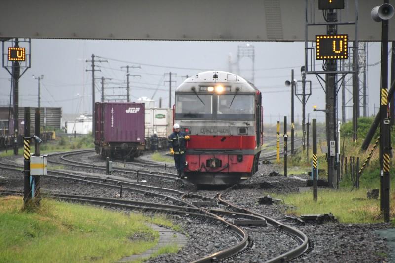 DF901DSC_1248-2.jpg