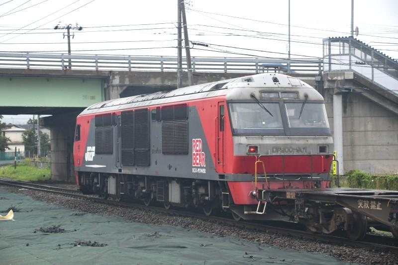DF901DSC_1360-2.jpg