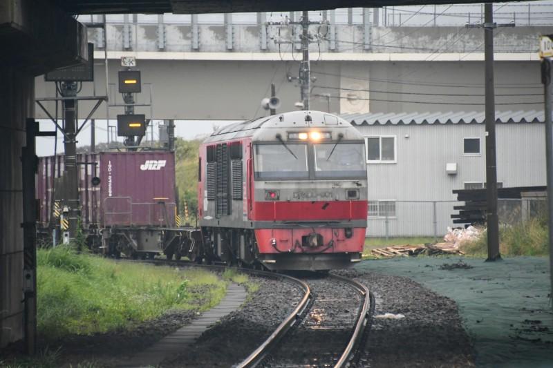 DF901DSC_1375-2.jpg