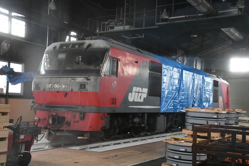 DF901DSC_3502-1.jpg