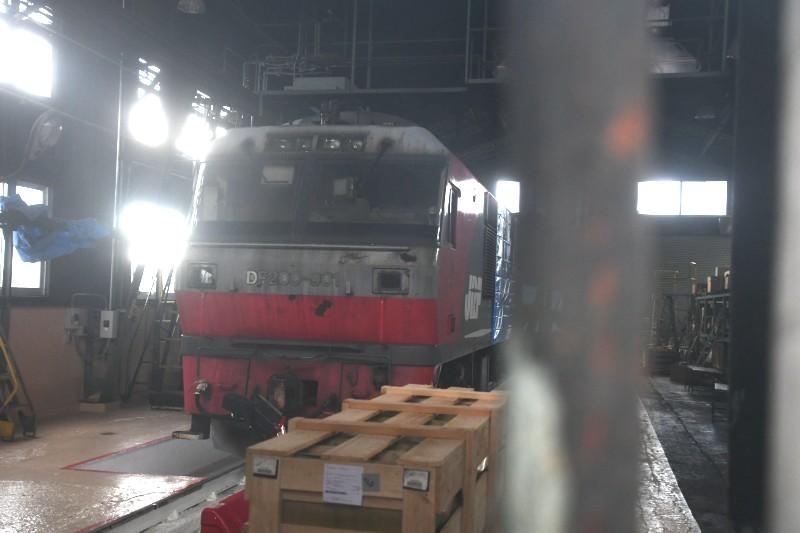 DF901DSC_3509-2.jpg