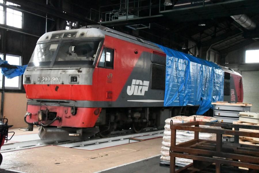 DF901DSC_3754-1.jpg
