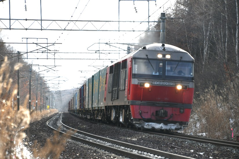 DF9DSC_4118-2.jpg