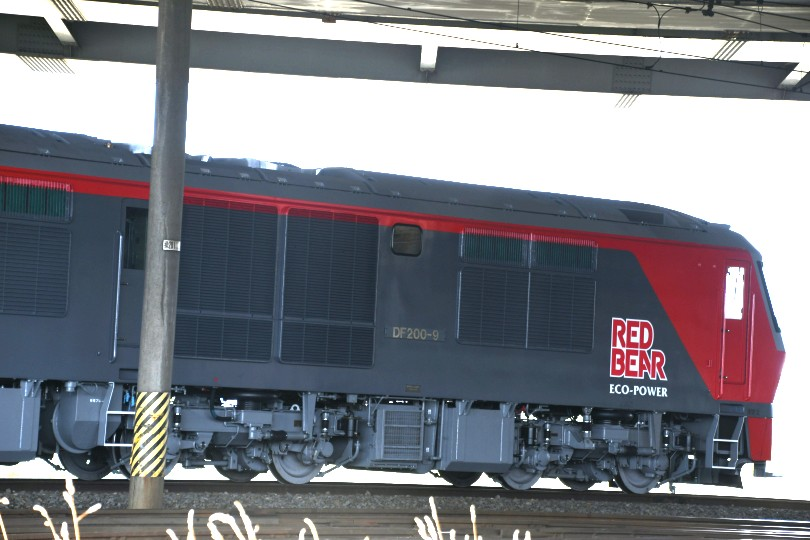 DF9DSC_9895-2.jpg