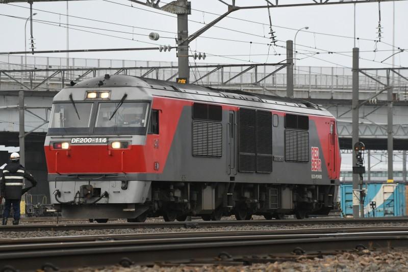 Df114DSC_8001-1.jpg
