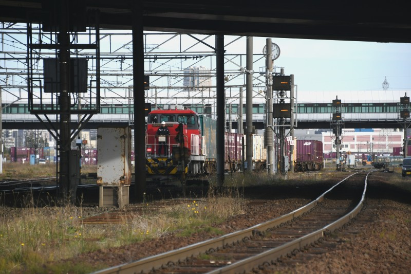HD502DSC_3139-2.jpg
