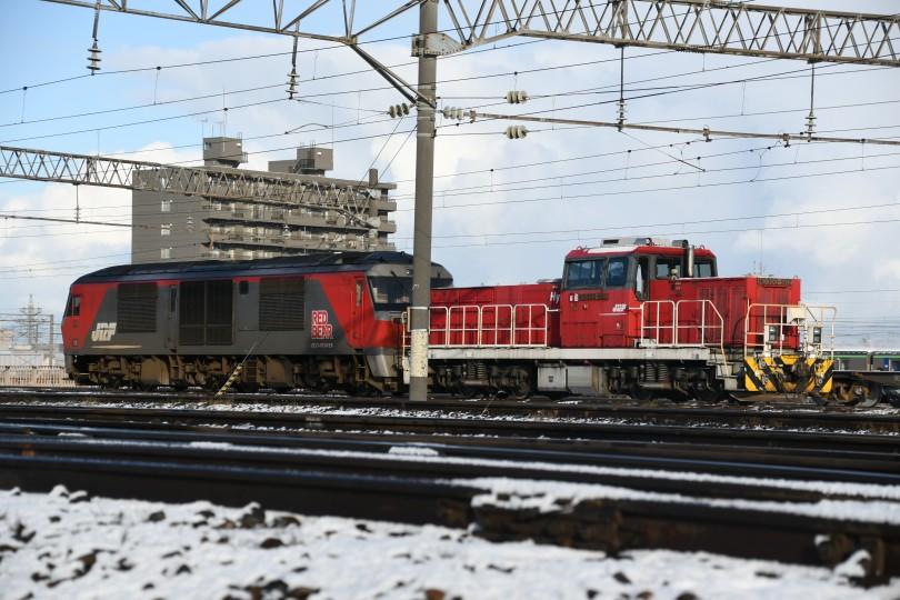 HD502DSC_3445-1.jpg
