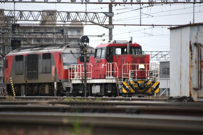 HD502DSC_7734-2.jpg
