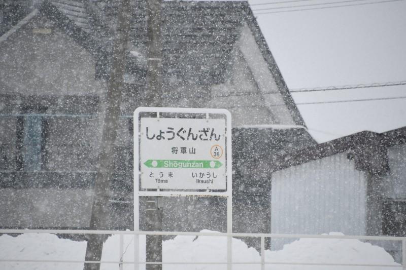 shogunzanDSC_6128-1.jpg