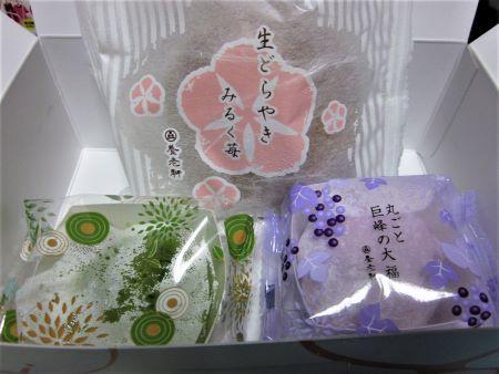 gifuomiya10.jpg