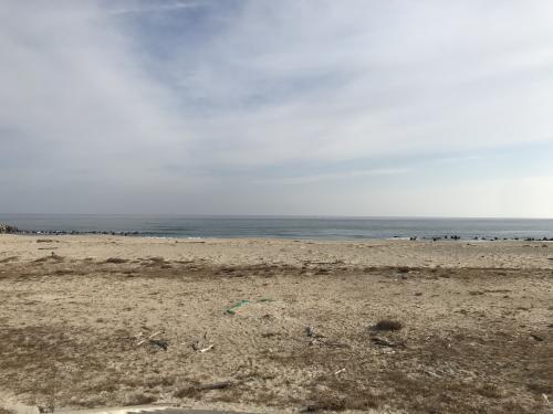 海辺のジテツウ(2021年1月)・16