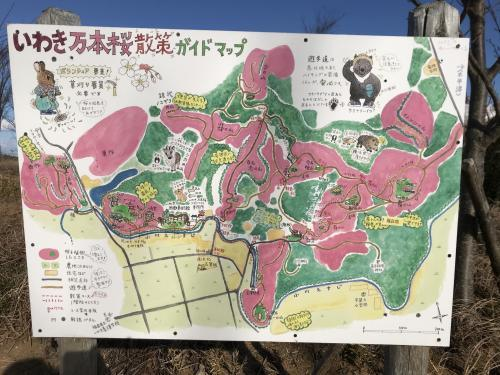 【万本桜の吊り橋】・11