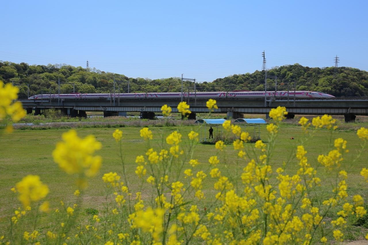 市川橋梁 (13) (1280x853)