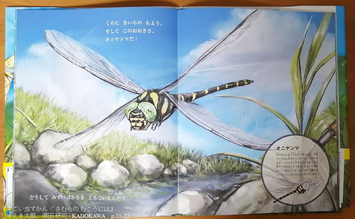 200630すごい虫図鑑くさむらのむこうには_3