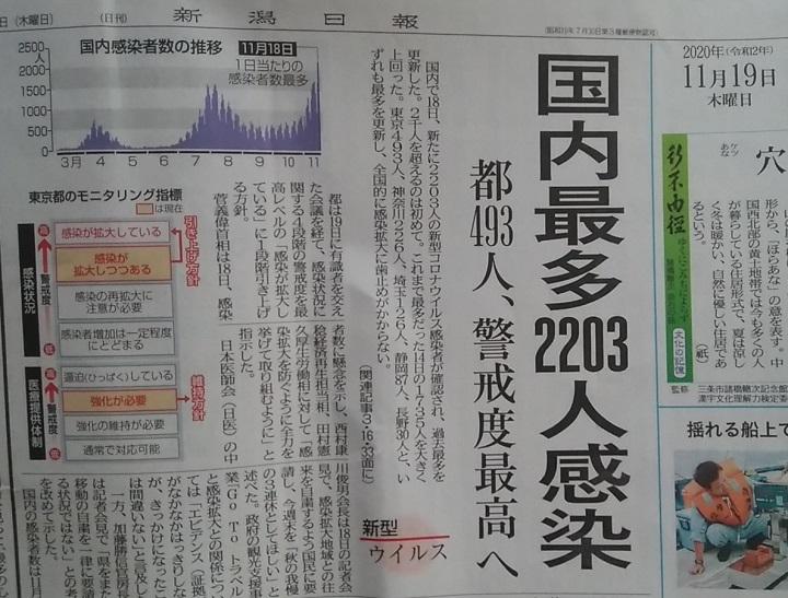 新潟日報20201119