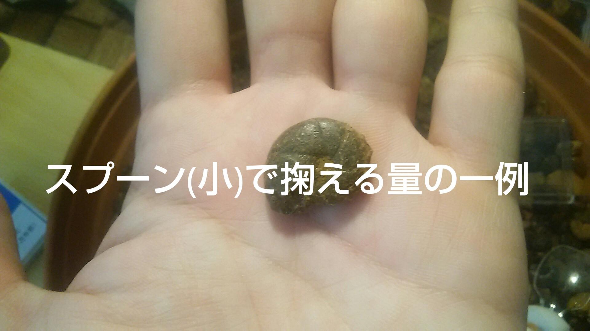 kaseki2.jpg