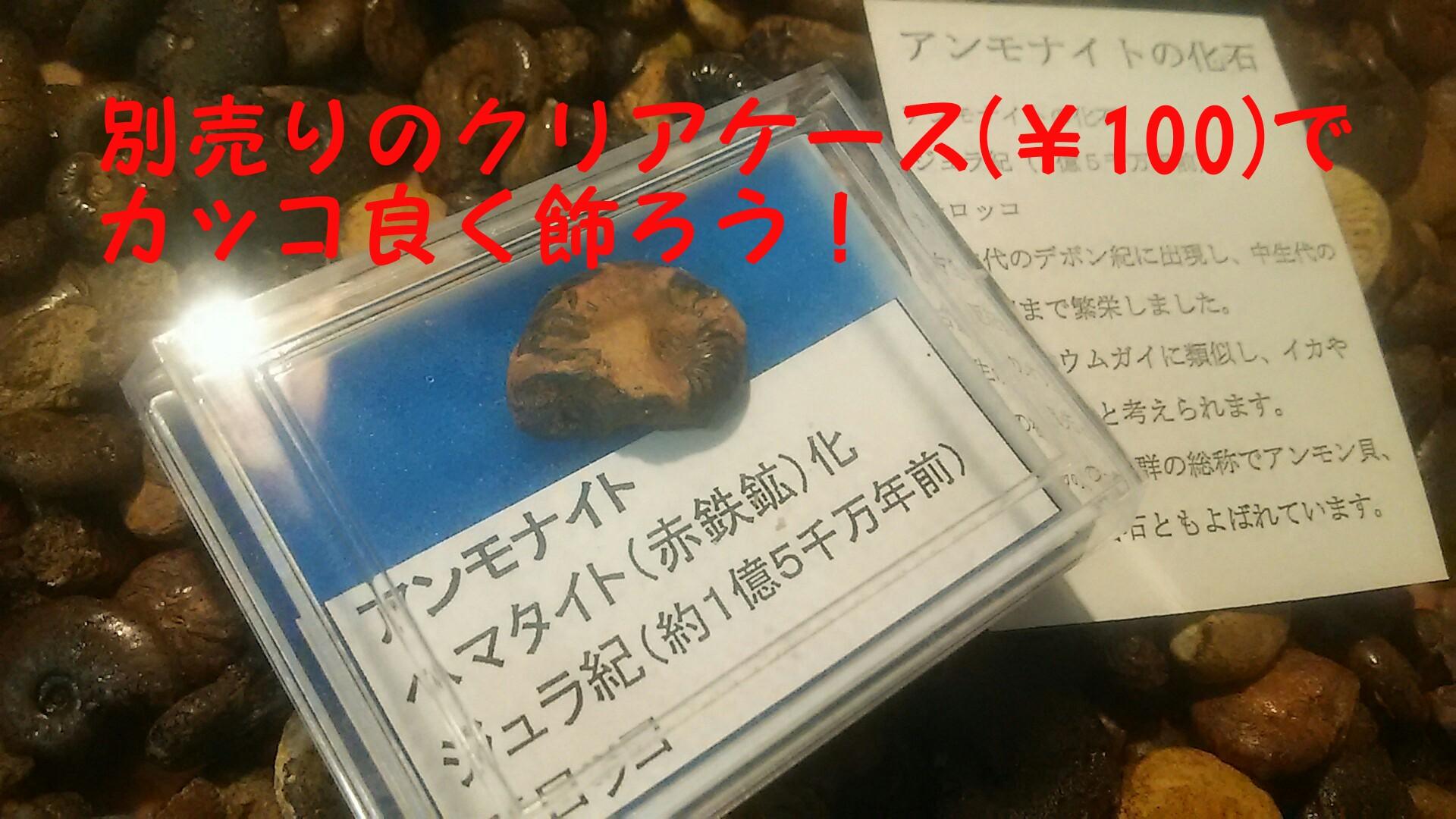 kaseki4.jpg