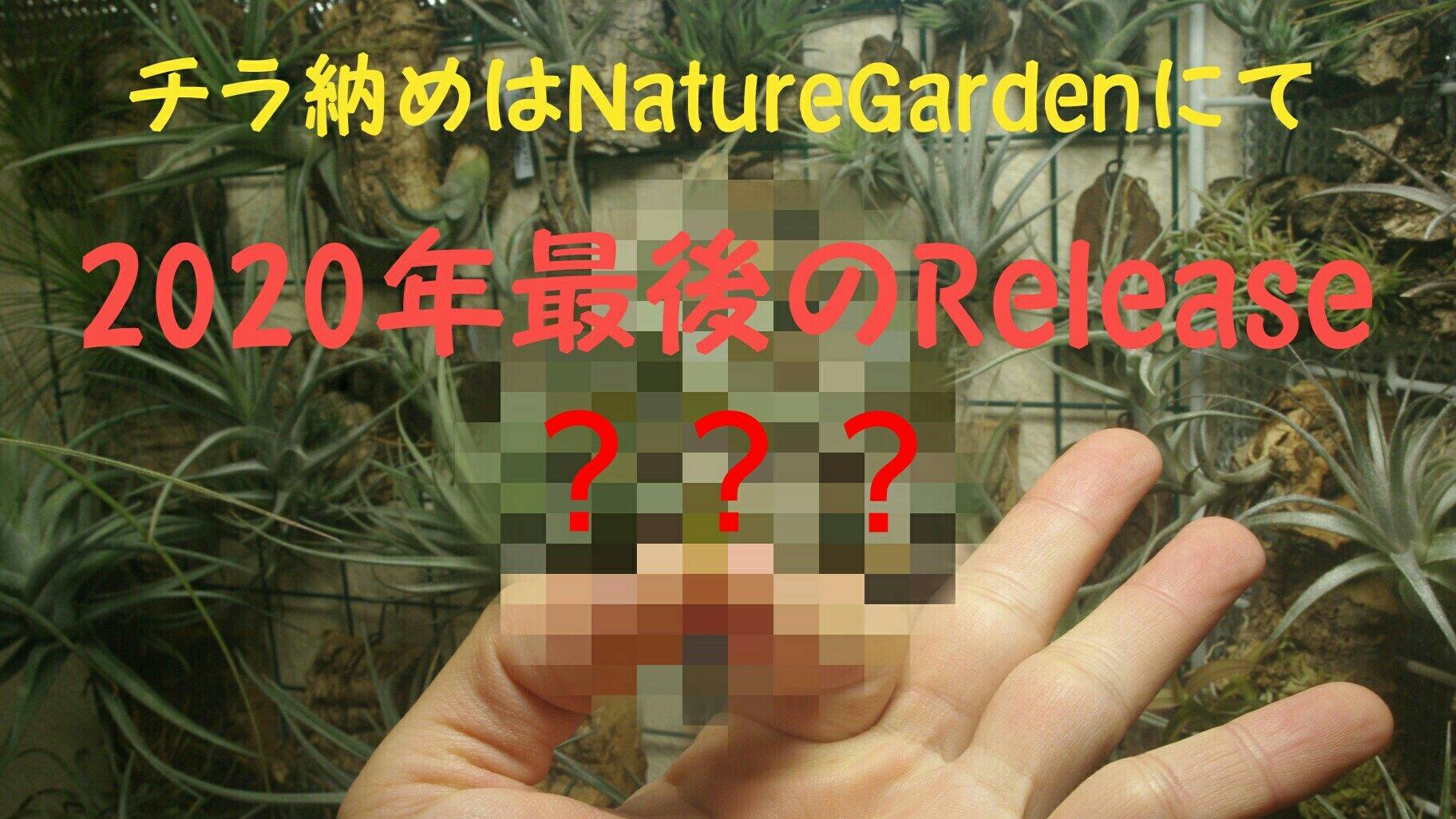 ririsu1218.jpg