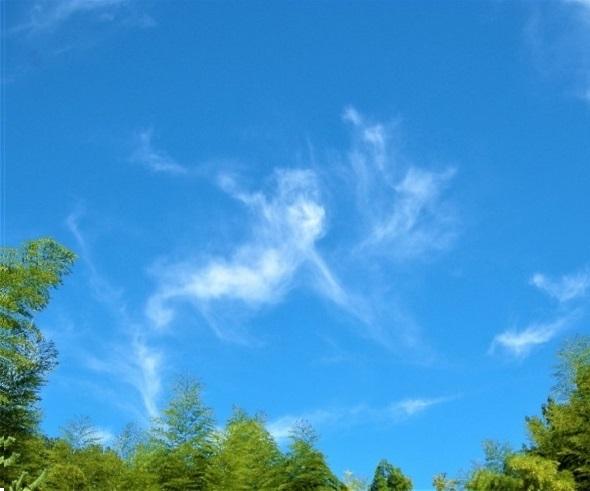 13の青い空