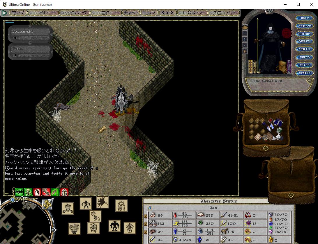 Ultima Online - Gon (Izumo) 2020_11_05 23_44_03