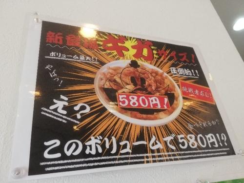 ShirasagiYamachan_004_org.jpg
