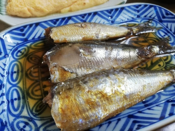 TenriShirakawa_004_org.jpg