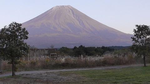 ふもとっぱら富士山