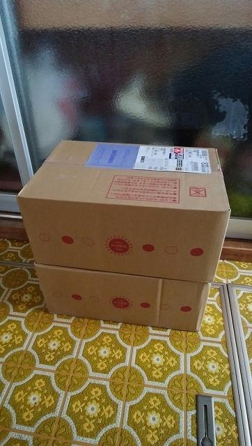 カルビ-2箱1