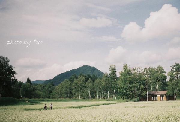 200630-2