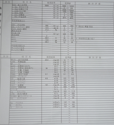 DSC_1239-1.JPG