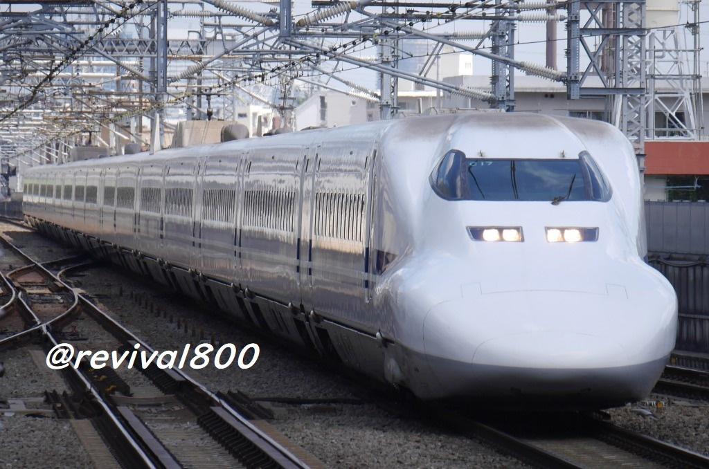 P1100836.jpg
