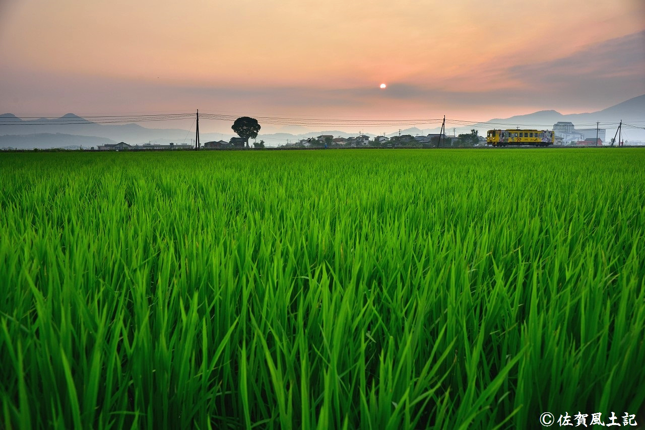 三日月町を走るラッピング列車:DSC_6792_00001
