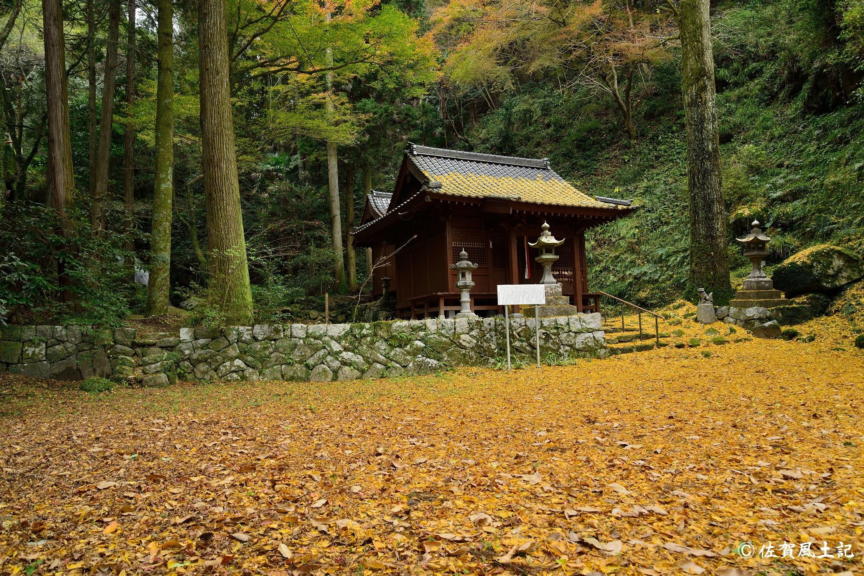後鳥羽神社:DSC_2873
