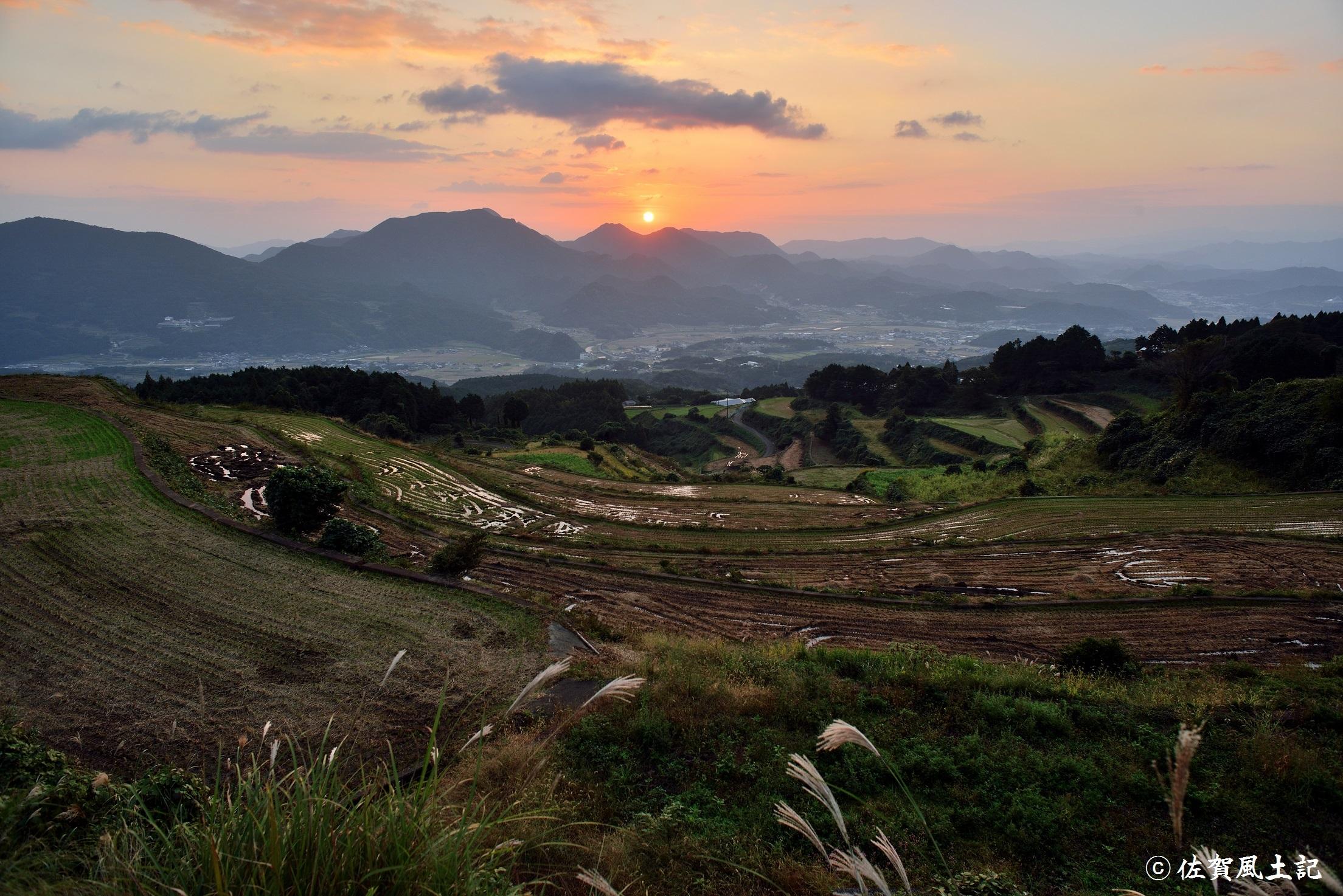 岳の棚田:DSC_7651