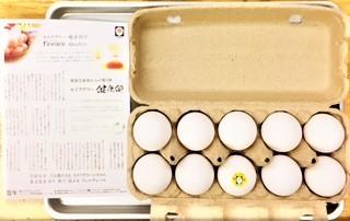 20210121セイアグリー健康卵