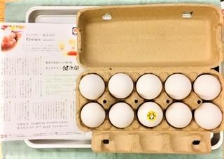 20210501セイアグリー健康卵