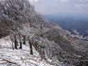 20210111-takami-snow-001.jpg