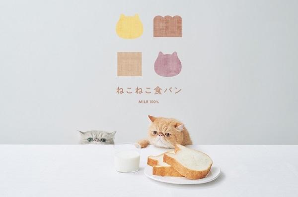 朝はパン8