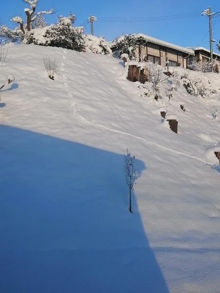 積雪令和二年6