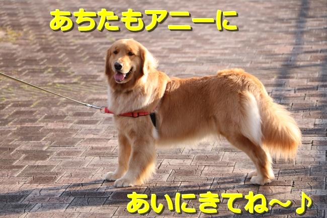 IMG_25880330.jpg
