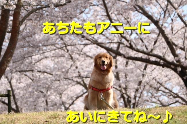 IMG_28520401.jpg