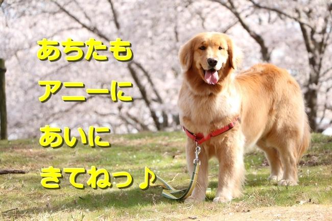 IMG_28800415.jpg