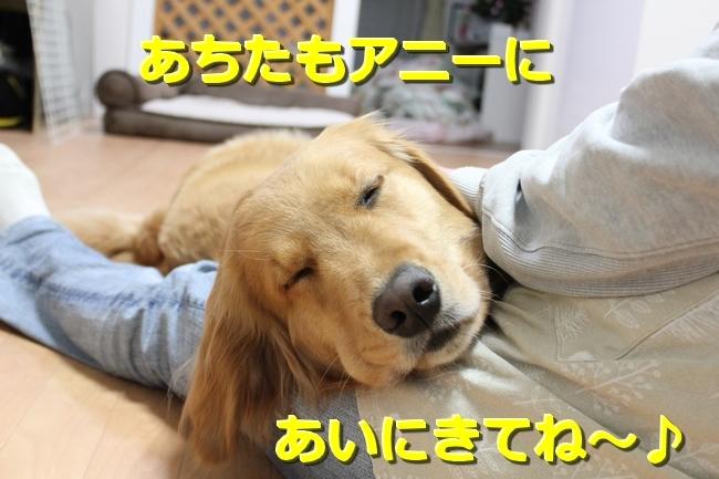 IMG_50320303.jpg