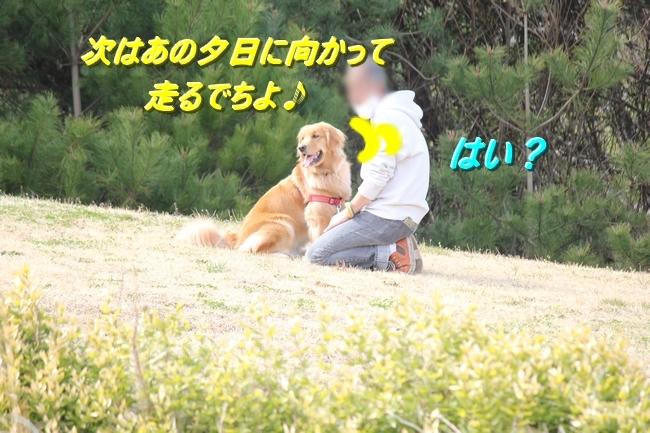 IMG_55740312.jpg