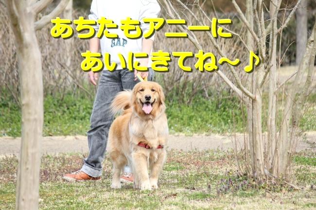 IMG_55800312.jpg
