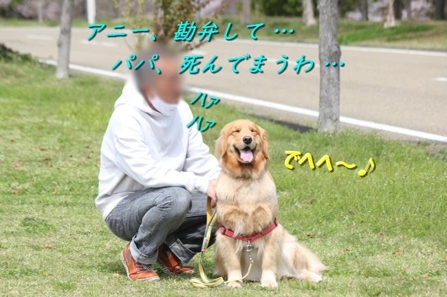 IMG_65900409.jpg