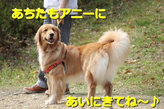 IMG_66780410.jpg