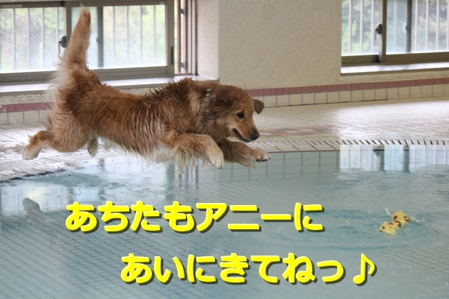 IMG_67810418.jpg